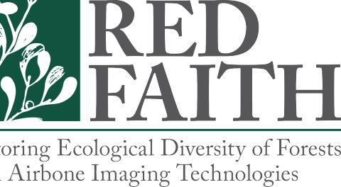 RED FAITH-Kick Off Meeting